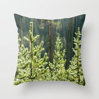 Young Lodgepole Pines after a rain Throw Pillow