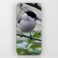 Marsh tit iPhone & iPod Skin