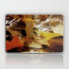 Crisp Autum Laptop & iPad Skin