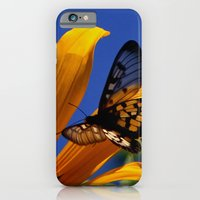 Transparent Butterfly iPhone 6 Slim Case