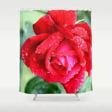 Rose by any other name Shower Curtain