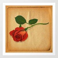 A Rose Art Print