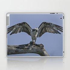 Osprey  Laptop & iPad Skin