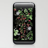 Mid Winter Berries iPhone & iPod Skin
