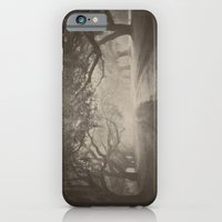 iPhone & iPod Case featuring Avenue of Oaks by Angela Stansell Photography