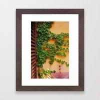 Ivy on the Terrace  Framed Art Print