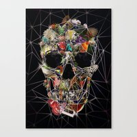 Fragile Skull Canvas Print