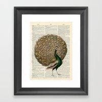 Vintage Peacock II Framed Art Print