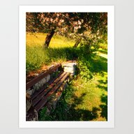 Old Bench, Old Trees, Ol… Art Print