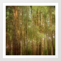 July forest Art Print