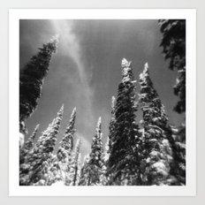 snow-capped . ii Art Print