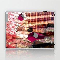 Baxotobami Laptop & iPad Skin