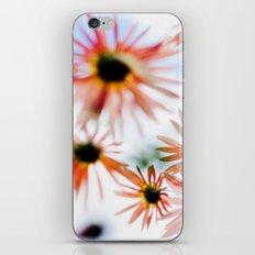 Happie (Daisies) iPhone & iPod Skin