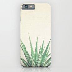 Haworthia iPhone 6 Slim Case