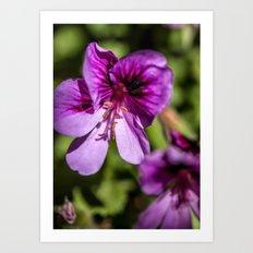 Purple and Pretty Art Print