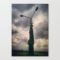 Light Post Canvas Print