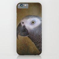 African grey parrot iPhone 6 Slim Case