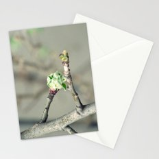 Bud in spring Stationery Cards