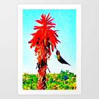 Stickybeaking Hummingbird Art Print