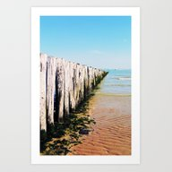 Water And Wood Art Print