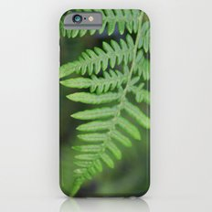 green fern leaves. floral nature wild plant photography. Slim Case iPhone 6s