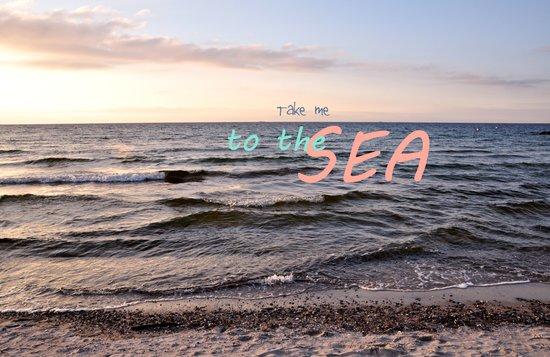 Take me to the Sea Canvas Print