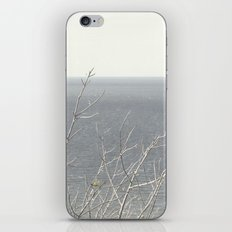 Branches at the sea iPhone & iPod Skin