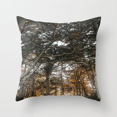 Golden Light Through The Trees Throw Pillow