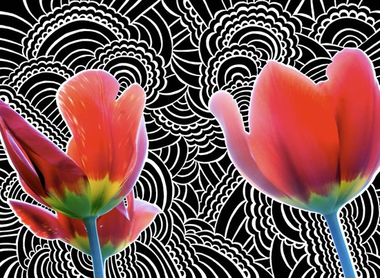 Tulip Drawing Meditation Art Print