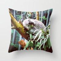Kozy Koala  Throw Pillow