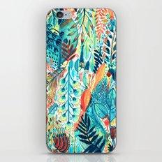 Pattern 27 iPhone & iPod Skin