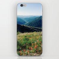 Gifford Pinchot National… iPhone & iPod Skin