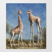Emmm...Welcome to the herd... Canvas Print