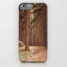 A Path in the Woods iPhone 6 Slim Case