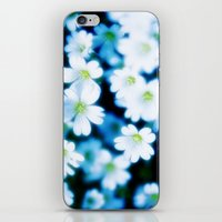 MEADOW DAISIES IN THE NIGHT iPhone & iPod Skin