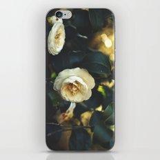 Beautiful Life iPhone & iPod Skin
