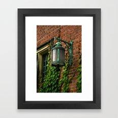 Light and Ivy Framed Art Print