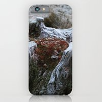 iPhone & iPod Case featuring Stump & Frost by Marisa Jane