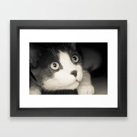 What Do You Think Mr Cat… Framed Art Print