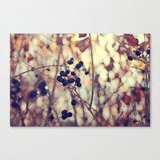 Autumn Sun in Ohio Canvas Print