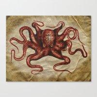 ä Octopus  Canvas Print