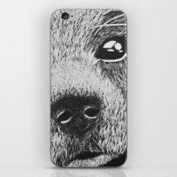 Cavalier puppy iPhone & iPod Skin