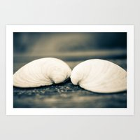 Sea Shell Love Art Print