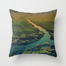 country feedback Throw Pillow