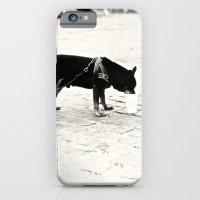 Dog On The Street iPhone 6 Slim Case