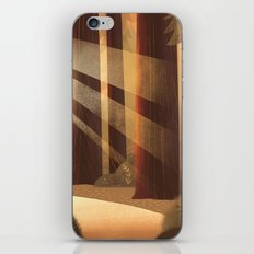 Redwoods iPhone & iPod Skin