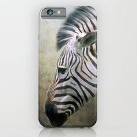 zebra iPhone & iPod Cases featuring Zebra by Pauline Fowler ( Polly470 )