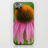 Coneflower With Bee iPhone 6 Slim Case
