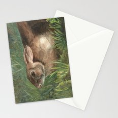 Shy Rabbit Stationery Cards