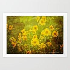 Flowers of the Field Art Print